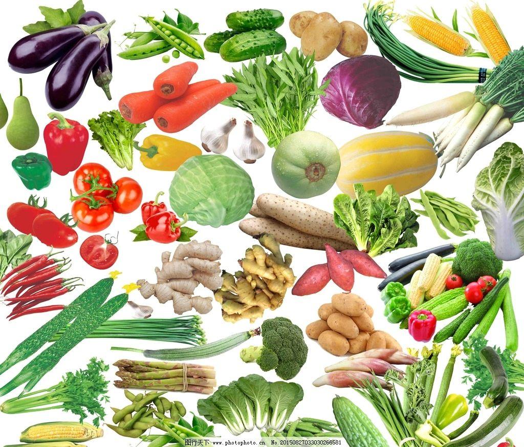 各种蔬菜PSD分层素材免费下载 玉米 白菜 茄子 苦瓜 黄瓜 辣椒